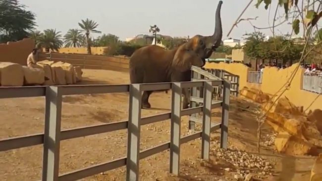 حدائق الرياض دليل افضل منتزهات وحدائق الرياض السعودية عالم السفر