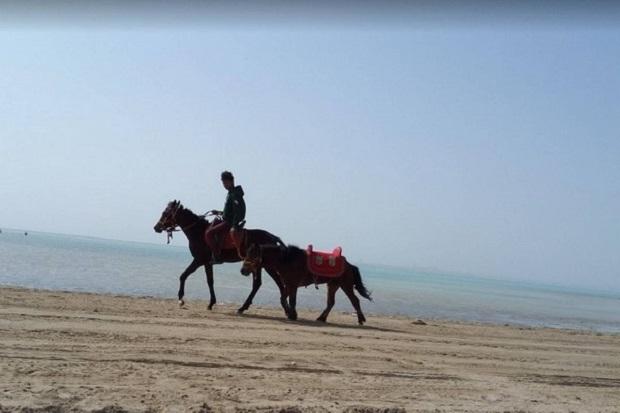 alsaif beach jeddah 2