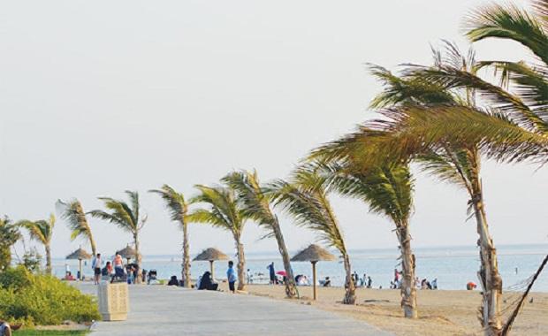 alsaif beach jeddah