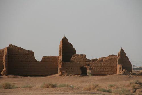 tourism in ar rass saudi arabia 2