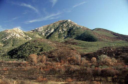 cowels mountain