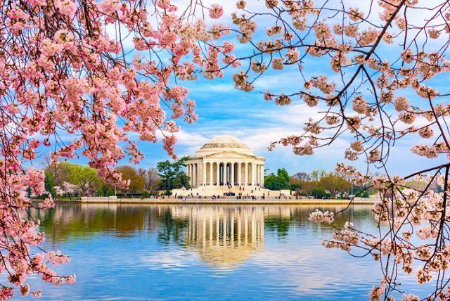 washington,D.C attractions