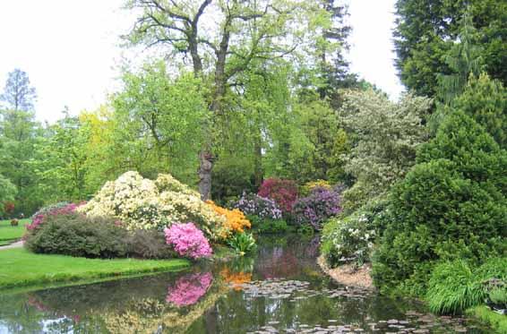 Arboretum Tromburg Rotterdam Park
