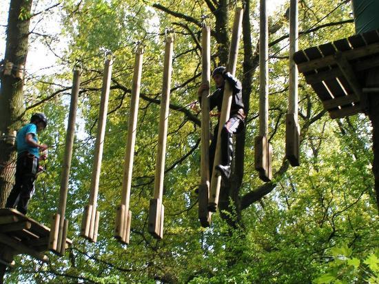 Fun Forest Rotterdam
