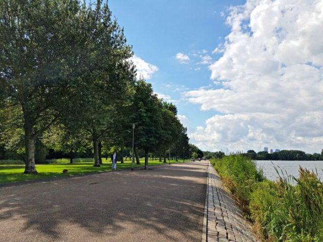 Kralingse Bos Rotterdam Park