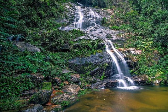غابة تيجوكا السياحة في ريو دي جانيرو