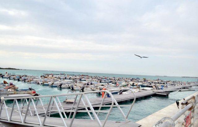 ميناء ثول للصيد