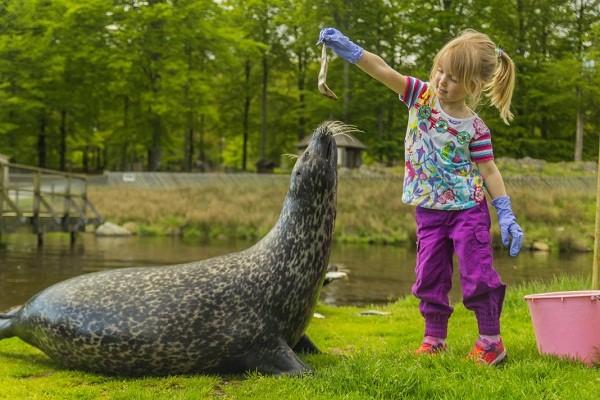 Children's Zoo Gothenburg