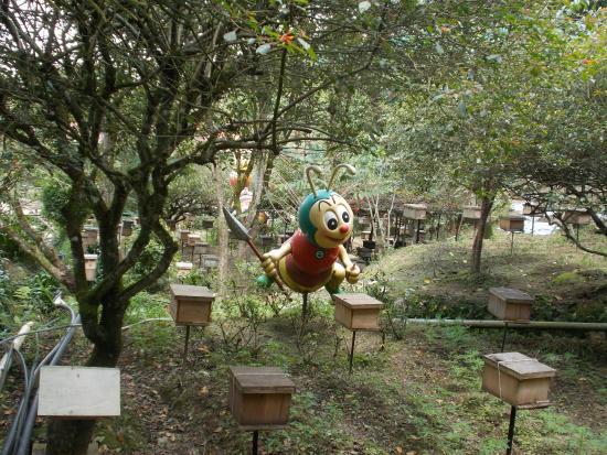 Ee Feng Gu Honey Bee Farm