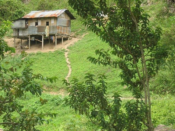 Orang Asli Village cameron highlands