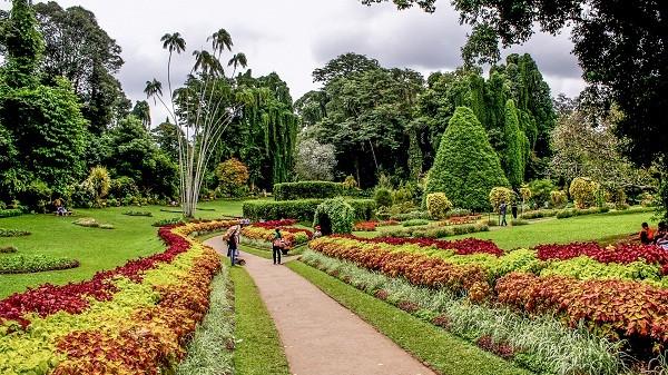 Perandeniya Botanical Gardens