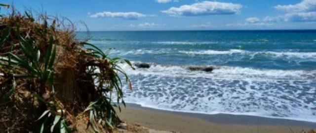 Playa de la Vibora beach marbella spain