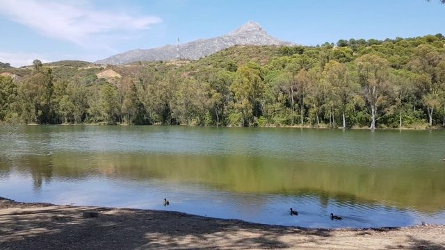 turtle lake marbella Spain