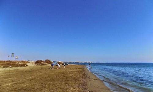 cessac beach larnaca