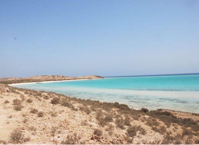 جزيرة جبل الصبايا في محافظة القنفذة