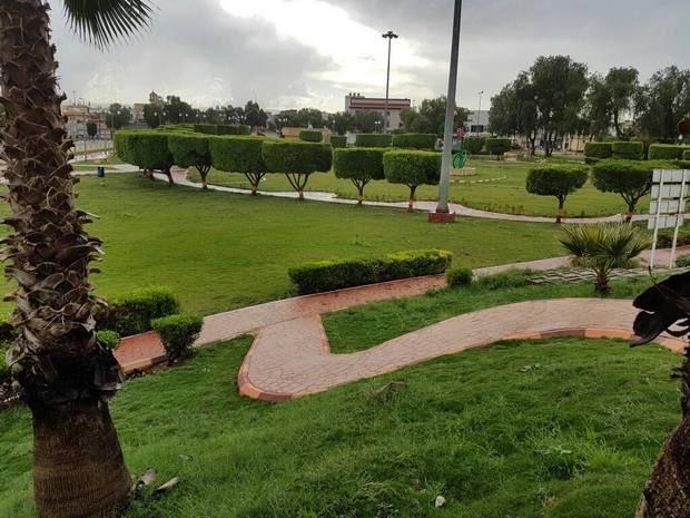 حديقة الشرفية