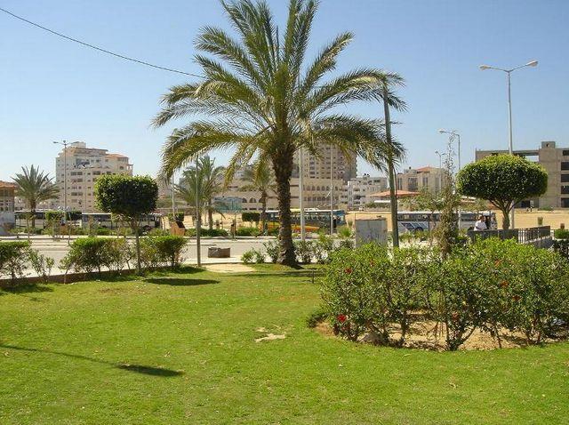 حديقة بلدية خميس مشيط