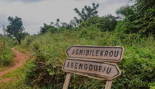 abengourou