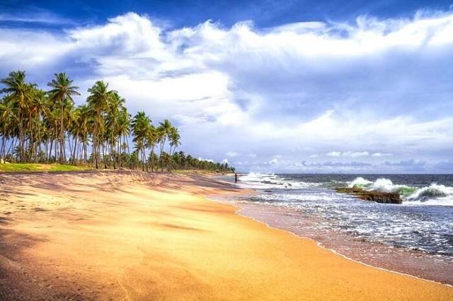 نيجومبو سريلانكا